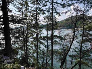 "Photo 11: 4147 FRANCIS PENINSULA Road in Madeira Park: Pender Harbour Egmont Land for sale in ""BEAVER ISLAND"" (Sunshine Coast)  : MLS®# R2393294"