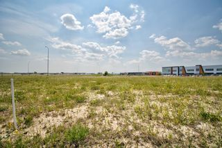 Photo 8: 11124 15 Street NE in Calgary: Stoney 1 Industrial Land for sale : MLS®# A1128526