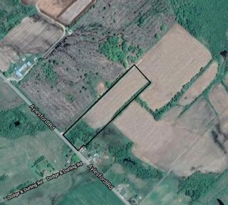 Photo 4: Lot Aylesford Road in Aylesford: 404-Kings County Vacant Land for sale (Annapolis Valley)  : MLS®# 202109516