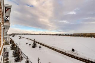 Photo 20: #7312 302 SKYVIEW RANCH DR NE in Calgary: Skyview Ranch Condo for sale : MLS®# C4186747