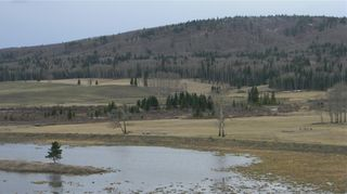 Photo 10: Corner of 178 Ave & 320 St W: Rural Foothills County Land for sale : MLS®# C4295343