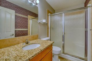 Photo 28: 123 Sagewood Grove SW: Airdrie Detached for sale : MLS®# A1044678