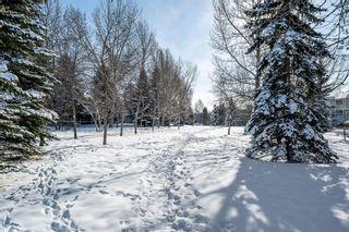 Photo 34: 156 Douglasbank Mews in Calgary: Douglasdale/Glen Detached for sale : MLS®# A1067908
