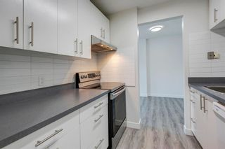 Photo 9: 203 510 58 Avenue SW in Calgary: Windsor Park Apartment for sale : MLS®# A1129465