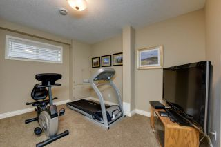 Photo 30:  in Edmonton: Zone 22 House for sale : MLS®# E4238657