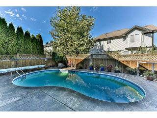 """Photo 12: 14693 59 Avenue in Surrey: Sullivan Station House for sale in """"PANORAMA HILL"""" : MLS®# R2004118"""
