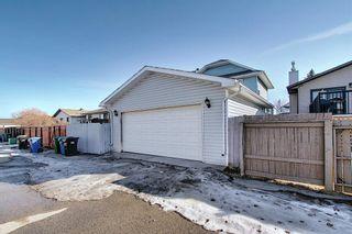 Photo 44: 132 Ventura Way NE in Calgary: Vista Heights Detached for sale : MLS®# A1081083