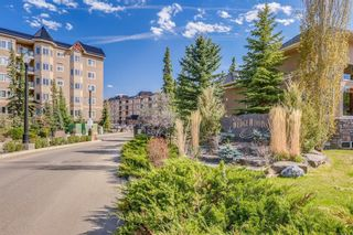 Photo 26: 340 10 DISCOVERY RIDGE Close SW in Calgary: Discovery Ridge Apartment for sale : MLS®# C4295828