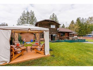 Photo 16: 6486 140 Street in Surrey: East Newton House for sale : MLS®# F1410007