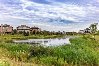 Photo 42: 1508 ADAMSON View in Edmonton: Zone 55 House for sale : MLS®# E4258596
