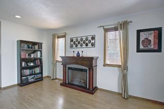 Photo 21: 187 Bridlewood Circle SW in Calgary: Bridlewood Detached for sale : MLS®# A1110273