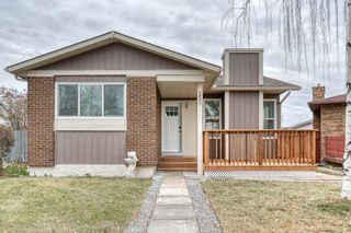 Photo 1: 355 Whitman Place NE in Calgary: Whitehorn Detached for sale : MLS®# A1046651