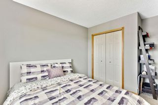 Photo 24: 279 TARACOVE ESTATE Drive NE in Calgary: Taradale Detached for sale : MLS®# C4297853