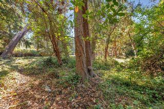 Photo 17: 3912 Sheret Pl in Saanich: SE Ten Mile Point Land for sale (Saanich East)  : MLS®# 887525