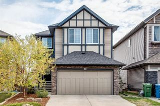 Photo 1: 56 BRIGHTONWOODS Grove SE in Calgary: New Brighton Detached for sale : MLS®# A1026524