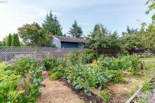 Photo 23: 6525 Golledge Ave in SOOKE: Sk Sooke Vill Core House for sale (Sooke)  : MLS®# 820262