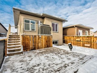 Photo 29: 238 RANCH Downs: Strathmore Detached for sale : MLS®# A1067410