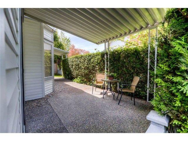 "Main Photo: # 105 13895 102ND AV in Surrey: Whalley Townhouse for sale in ""Wyndham Estates"" (North Surrey)  : MLS®# F1314383"