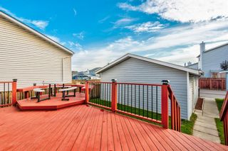 Photo 36: 18 Erin Meadow Close SE in Calgary: Erin Woods Detached for sale : MLS®# A1143099