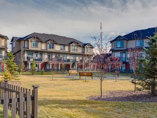 Photo 48: 1602 1086 Williamstown Boulevard NW: Airdrie Row/Townhouse for sale : MLS®# A1047528