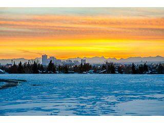 Photo 14: 124 WHITEHORN Road NE in Calgary: Whitehorn Residential Detached Single Family for sale : MLS®# C3644255