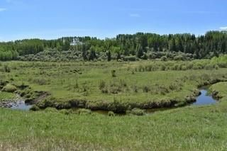 Photo 23: 498 Ave W & Hwy 22: Rural Foothills County Land for sale : MLS®# C4302344