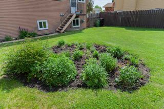 Photo 31: 3716 45 Street in Edmonton: Zone 29 House for sale : MLS®# E4248056