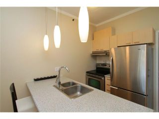 """Photo 9: 206 1 E CORDOVA Street in Vancouver: Downtown VE Condo for sale in """"CARRALL STATION"""" (Vancouver East)  : MLS®# V820385"""
