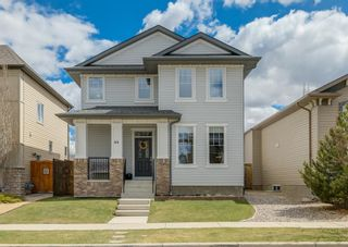 Photo 1: 44 ELGIN MEADOWS Manor SE in Calgary: McKenzie Towne Detached for sale : MLS®# A1103967