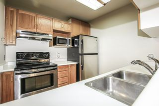 Photo 4: 208 2435 WELCHER Avenue in Port Coquitlam: Central Pt Coquitlam Condo for sale : MLS®# R2404602
