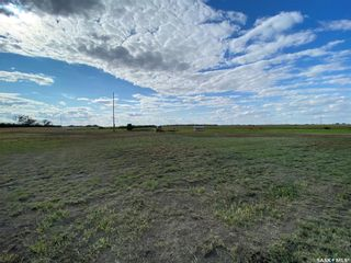 Photo 14: Haapala Acreage in Outlook: Residential for sale : MLS®# SK868061