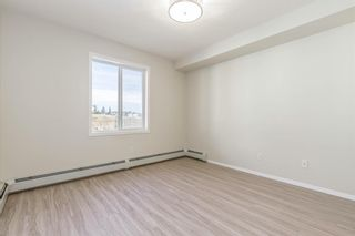 Photo 18: 306 2000 Citadel Meadow Point NW in Calgary: Citadel Apartment for sale : MLS®# A1055011