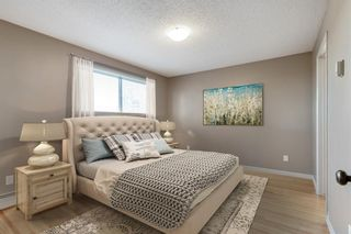 Photo 14: 2815 11 Avenue SE in Calgary: Albert Park/Radisson Heights Detached for sale : MLS®# A1149863