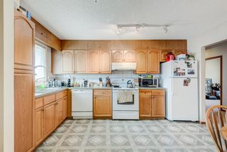 Photo 11: 203 Range Crescent NW in Calgary: Ranchlands Detached for sale : MLS®# A1111226