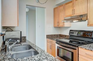 Photo 9: 407 315 9A Street NW in Calgary: Sunnyside Apartment for sale : MLS®# A1122894