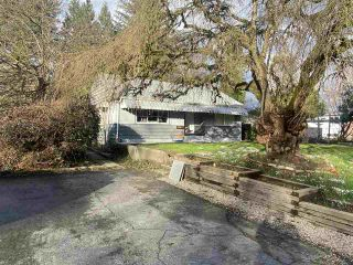 Photo 14: 22165 CLIFF Avenue in Maple Ridge: West Central House for sale : MLS®# R2541842