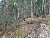 Photo 5: Lot 170 Halibut Hill in : Isl Mudge Island Land for sale (Islands)  : MLS®# 866549