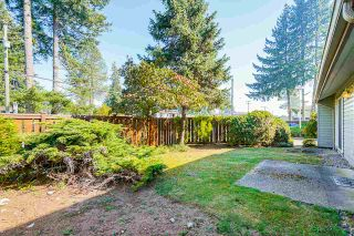 """Photo 19: 5 3397 HASTINGS Street in Port Coquitlam: Woodland Acres PQ Townhouse for sale in """"MAPLE CREEK"""" : MLS®# R2512704"""
