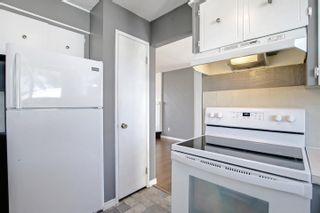 Photo 15: 11336 164 Avenue in Edmonton: Zone 27 House for sale : MLS®# E4264049