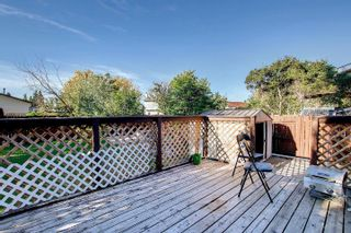 Photo 30:  in Edmonton: Zone 29 House for sale : MLS®# E4262869
