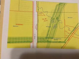 Photo 10: Hwy 21 TWR 534 - 540: Rural Strathcona County Rural Land/Vacant Lot for sale : MLS®# E4224886