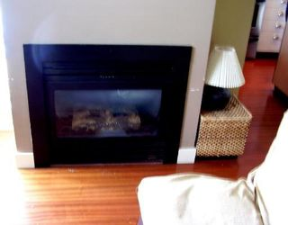 """Photo 4: 403 1238 BURRARD Street in Vancouver: Downtown VW Condo for sale in """"ALTADENA"""" (Vancouver West)  : MLS®# V718474"""