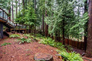 """Photo 34: 5845 237A Street in Langley: Salmon River House for sale in """"Tall Timber Estates"""" : MLS®# R2529743"""