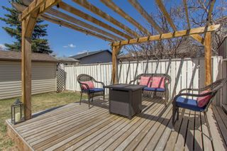 Photo 29: 421 Big Springs Drive SE: Airdrie Detached for sale : MLS®# A1099783