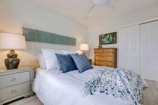 Photo 11: 246 Strathmore Boulevard in Toronto: Danforth House (2-Storey) for sale (Toronto E03)  : MLS®# E5219540