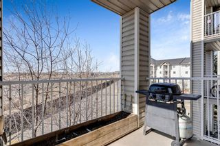 Photo 14: 328 1717 60 Street SE in Calgary: Red Carpet Apartment for sale : MLS®# A1090437