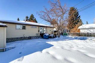 Photo 39: 6412 Dalton Drive NW in Calgary: Dalhousie Detached for sale : MLS®# A1071648