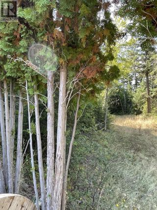 Photo 13: 1803 SOUTH LAKESIDE DRIVE in Williams Lake: Vacant Land for sale : MLS®# R2612495