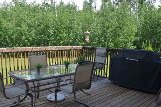 Photo 33: 472016 RGE RD 241: Rural Wetaskiwin County House for sale : MLS®# E4242573