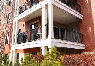 Photo 46: 207 9819 96A Street in Edmonton: Zone 18 Condo for sale : MLS®# E4242539